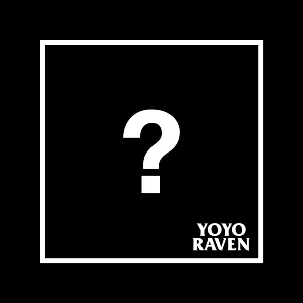 YoYoRaven Mystery Box 2019